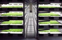 Роботизирана ферма