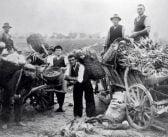 По стъпките на българските градинари в Европа, Америка и Австралия