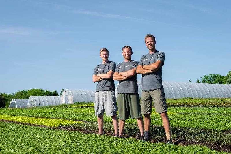 Фермерски кооператив FairShare