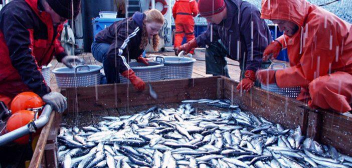 Рибарство