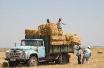 Земеделци