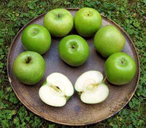 Арктическа ябълка