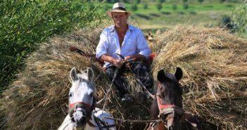 Румънски фермер