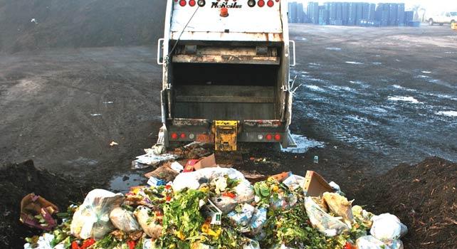 Изхвърлена храна