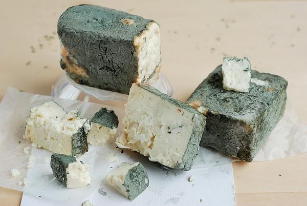 Зеленото сирене от Черни Вит