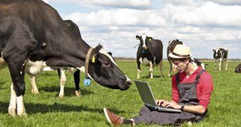 Интернет земеделци
