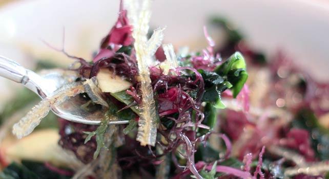 Храни от водорасли