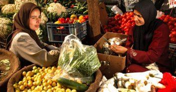 Турция селско стопанство