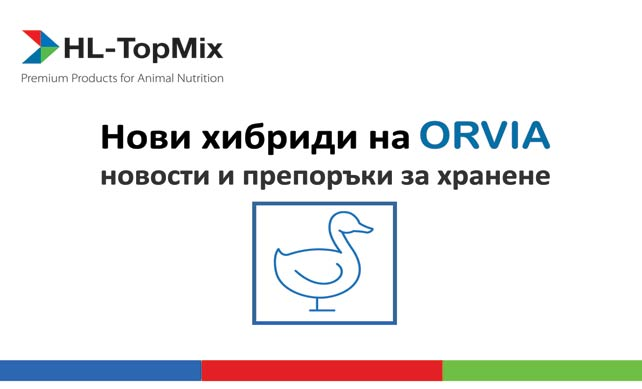 Патици Top-mix