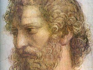 Аристотел прави множество погрешни заключения за пчелите