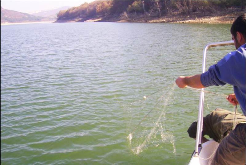 Рибарски мрежи бракониери