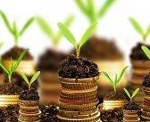 ДФЗ обяви индикативния график за плащанията за Кампания 2021 г.