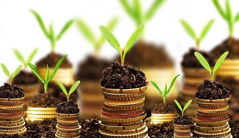 Субсидии, директни плащания