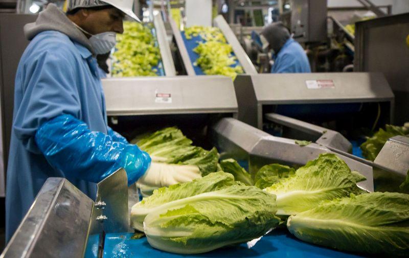 Преработка на земеделска продукция