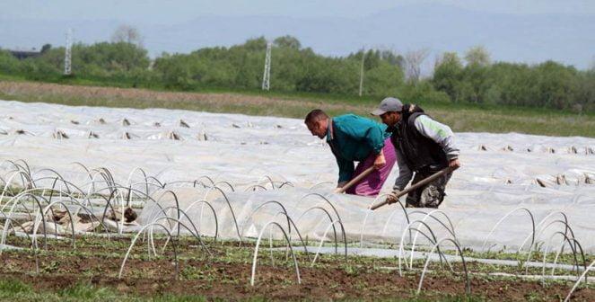 Свободните средства по европрограмите може да идат при фермерите