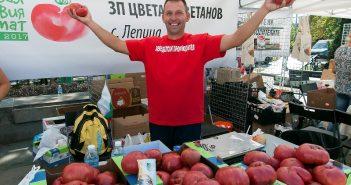 МЕТРО Розов домат