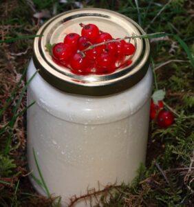 Кисело мляко Родопа милк