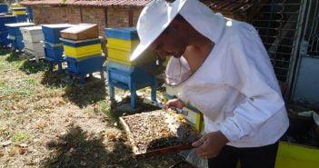 Пчелин Цвети и Георги Априлово