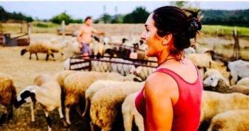 Ана Петрова овце Болярово