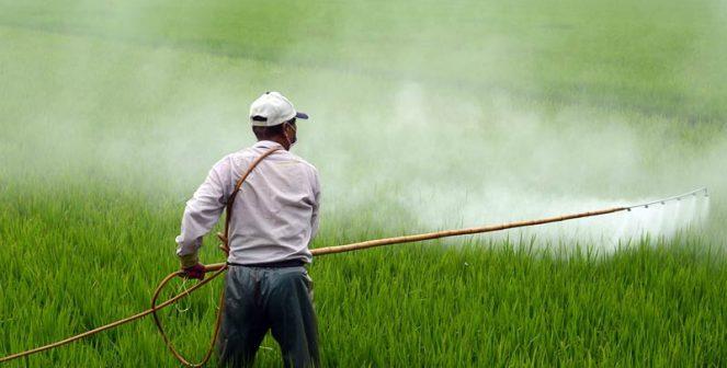 Над 480 тона фалшиви и нелегални пестициди са конфискувани в Европа