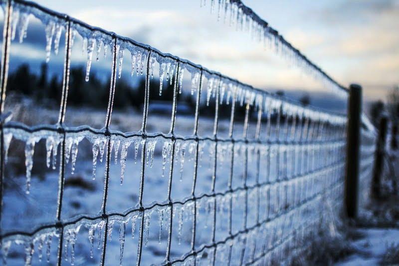 Заледяване, измръзване, климатични промени