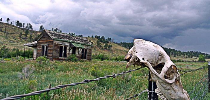 76 000 животновъдни ферми са фалирали за три години в България