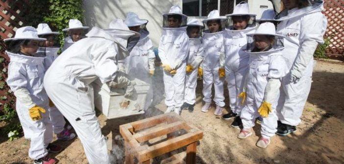 Пчелин в училище