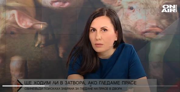 Радостина Донева, АРСИС