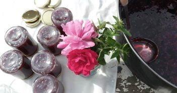 Сладко ягоди и рози От градината на село Елена Николова