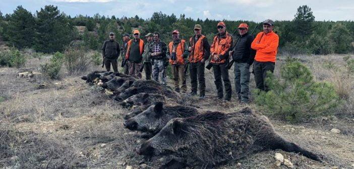 Ловци дива свиня