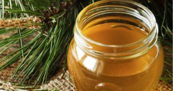 Боров мед Турция