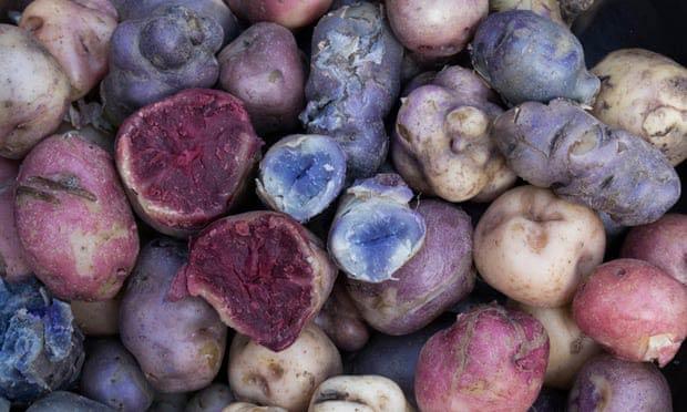 Музей на картофите Перу
