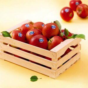 Клубни сортове ябълки