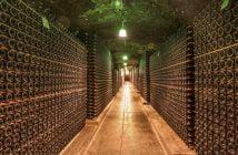 Вино, винарска изба
