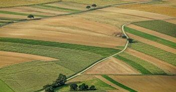 Земя, поле