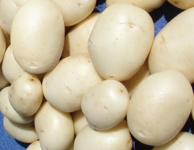 Бели картофи