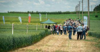 Ден на пшеницата 2021