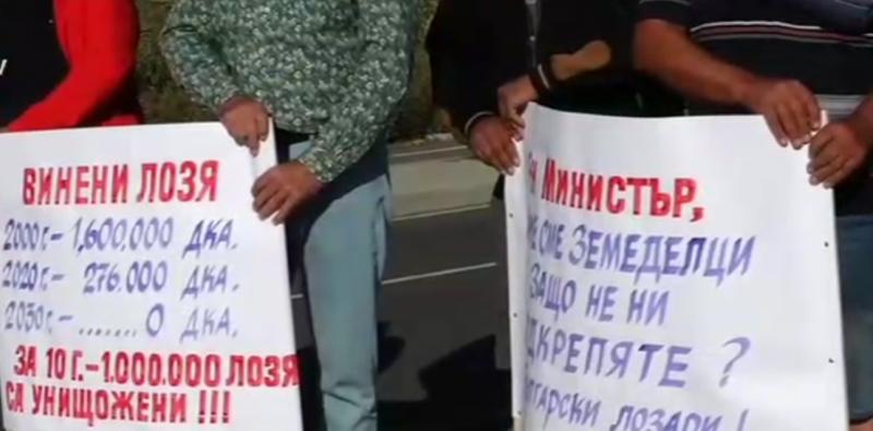 Протест лозари